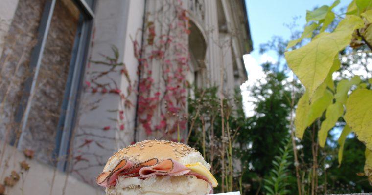 Ham and Salami on sesame seed bun