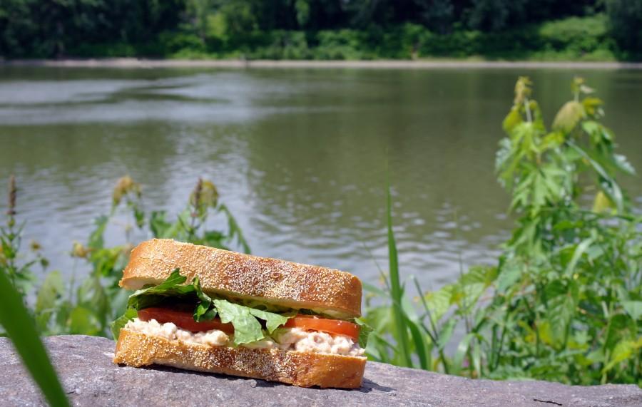 salmon_salad